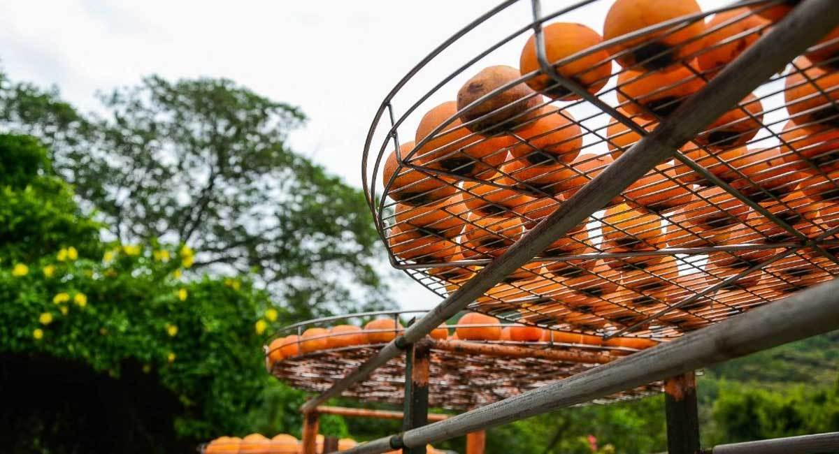 How To Dehydrate Fruit Without A Dehydrator